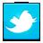 1367588726 social twitter bird